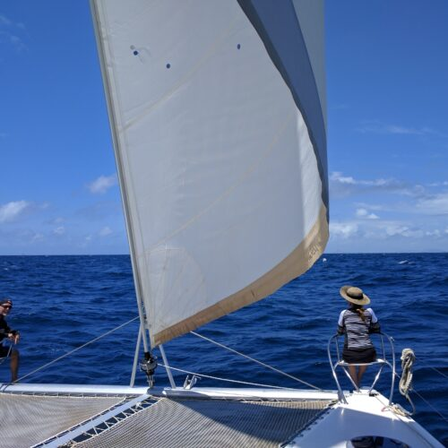 guests sailing 1
